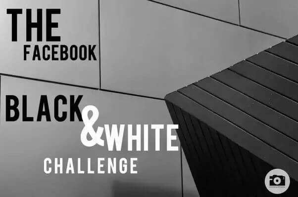 Black and white picture photo challenge on facebook